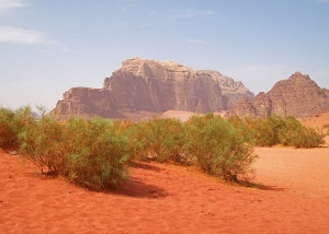 View_from_creek_bed,_Wadi_Rum